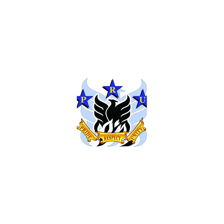 P.R.U. Electronics-logo