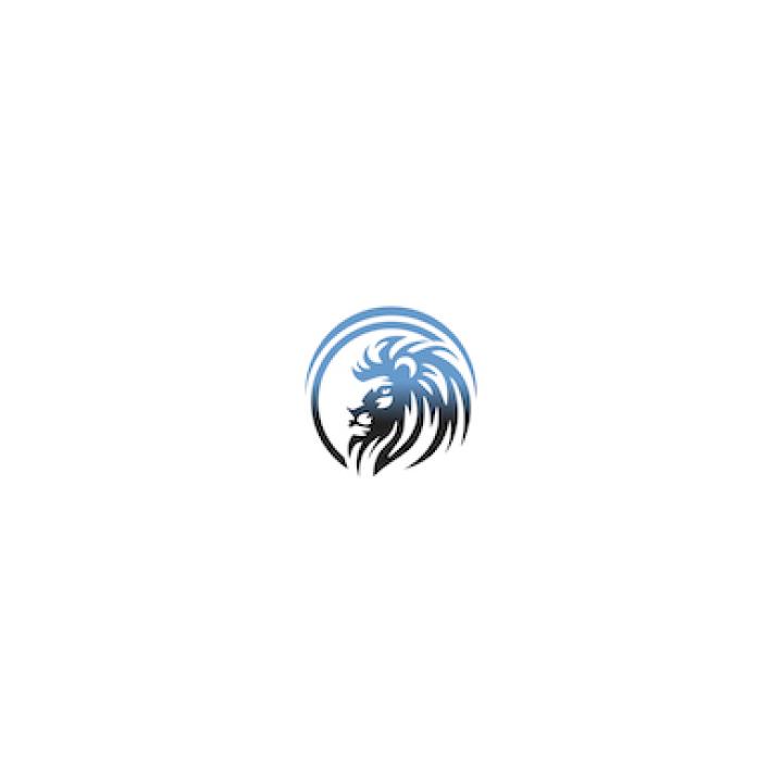 Digital Kings Networking-logo